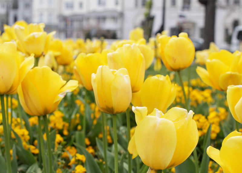 Easter Saturday Hour by Hour, Top UK Lifestyle Blogs