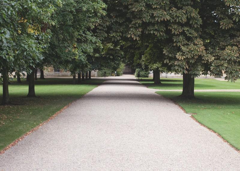 Cambridge spots