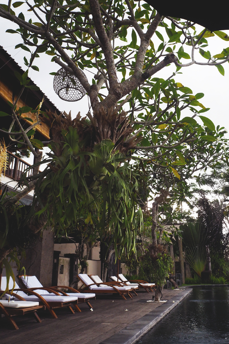 Best Hotels in Bali, Bumpkin Betty