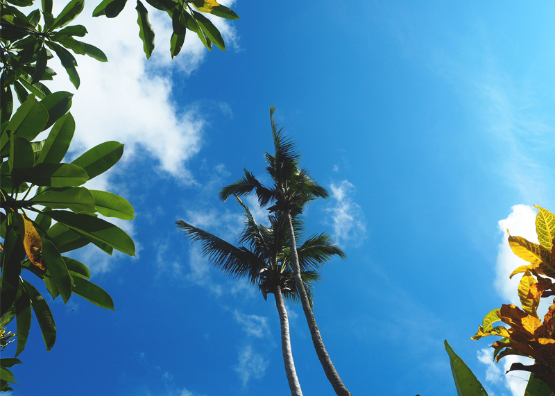 Postcards from Bali, Bumpkin Betty