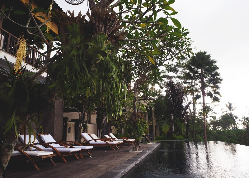 Three days in Ubud, Bali, Bumpkin Betty