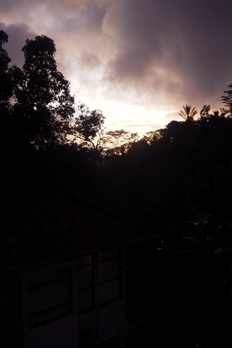 Sunset at Alam Ubud, Bumpkin Betty