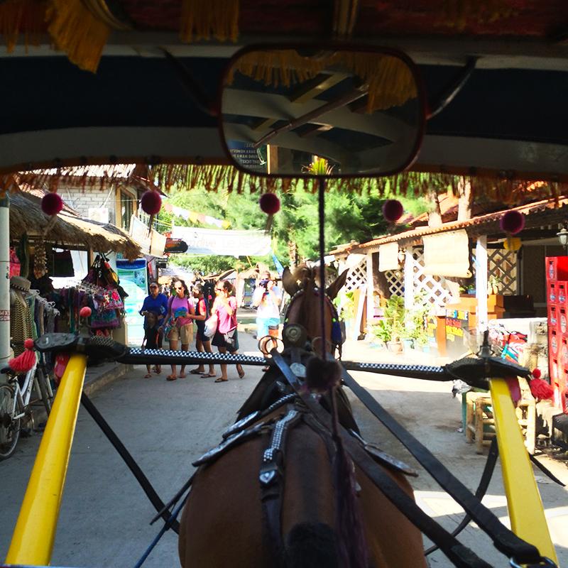 Transport on the Gili Islands, Bumpkin Betty