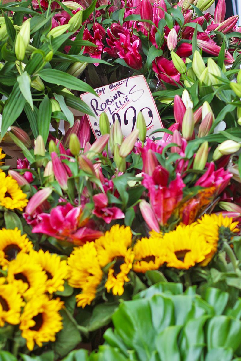 Chelmsford flower market, Bumpkin Betty