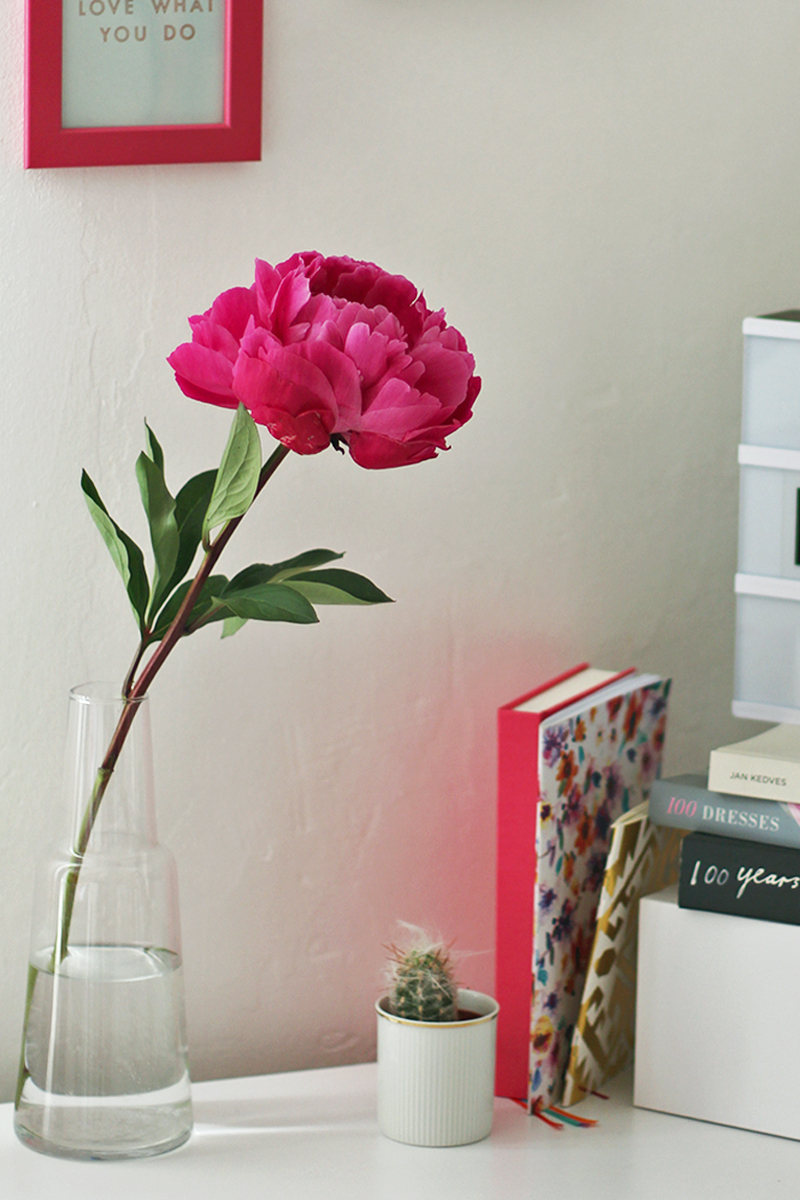 Flowers to add to your desk, Bumpkin Betty