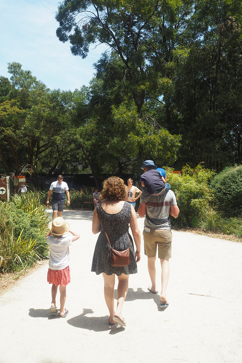 Healesville Sanctuary Australia, Bumpkin Betty