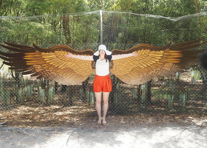 Healesville Sanctuary, Bumpkin Betty