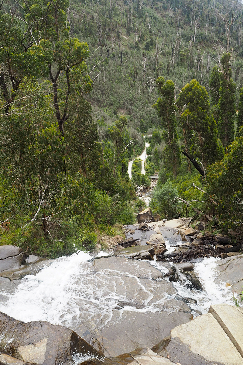 Things to do in Victoria Australia, Bumpkin Betty