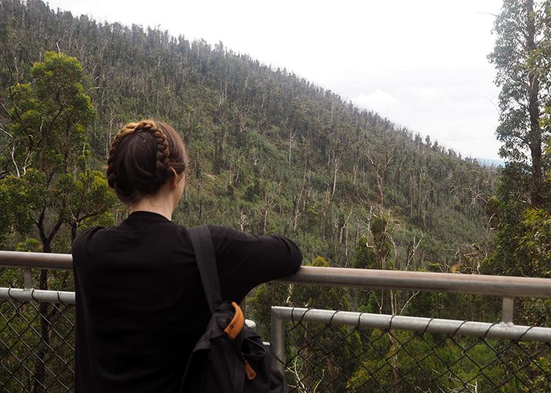 Views at Steavenson Falls, Bumpkin Betty