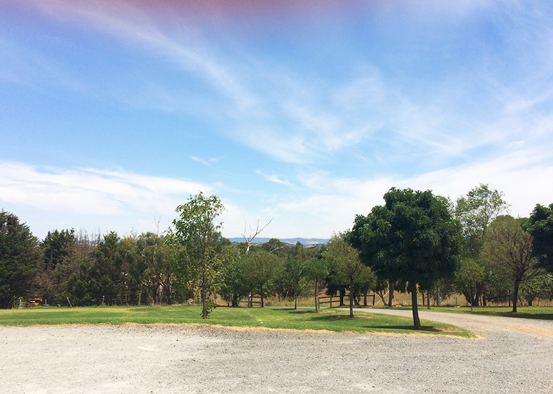 Visiting the Yarra Valley Melbourne, Bumpkin Betty