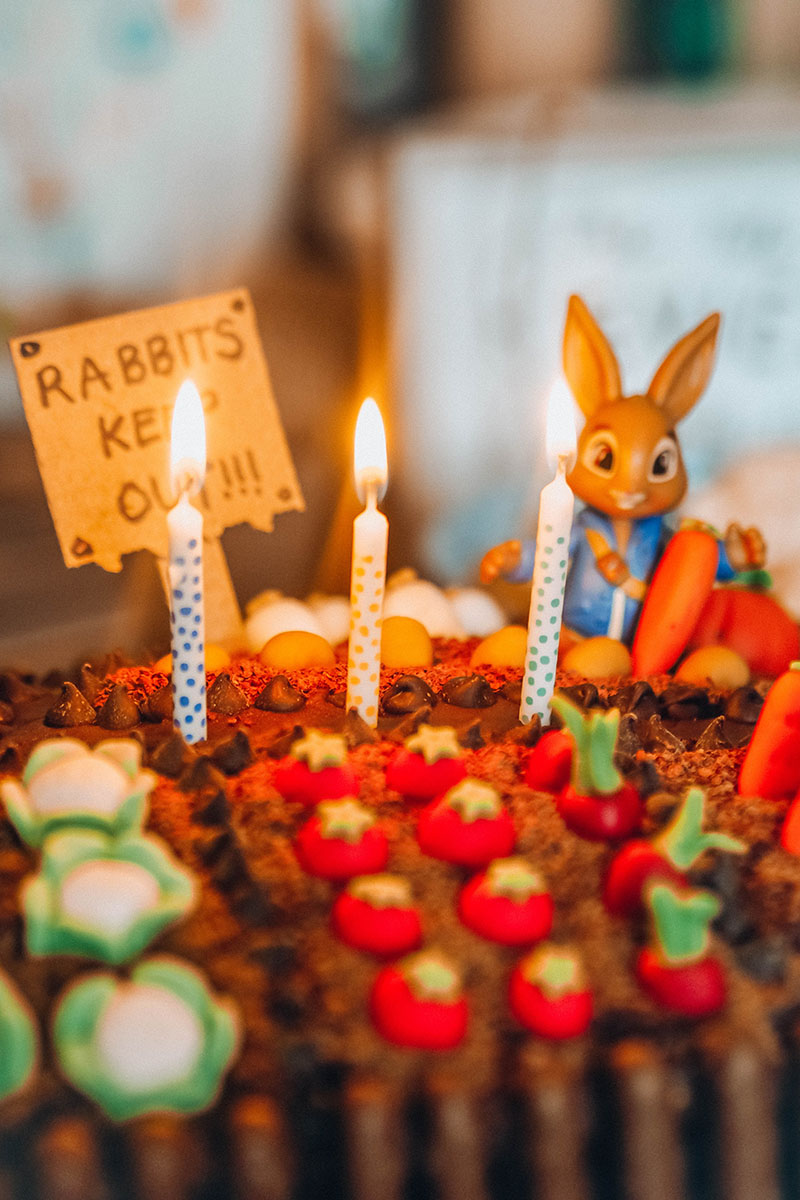 Peter rabbit birthday cake garden, Jaclyn Ruth